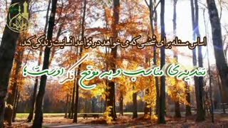 تغذیه فکری-حجت الاسلام محمد جواد نوروزی نصرت