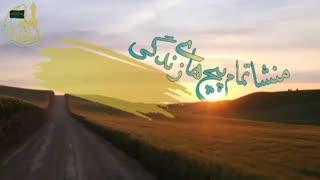 پیچ های زندگی-حجت الاسلام محمد جواد نوروزی نصرت