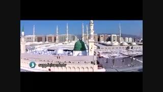 مولودی خوانی محمود کریمی پیرامون پیامبر اسلام صلوات الله و سلامه علیه