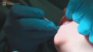 رشته دندان پزشکی در انگلیس، موسسه مهاجرت تحصیلی   go2tr