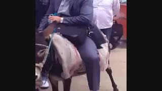 استاد خر سوار بعد گرانی بنزین