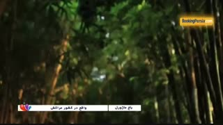 باغ ماژورل با مناظری زیبا و متنوع در کشور مراکش - بوکینگ پرشیا