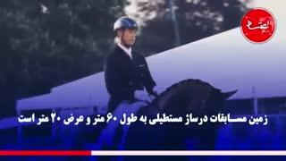 درساژ، خَرامِش با اسبها