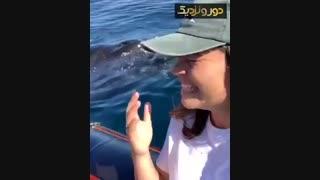 احساسات جالب این دختر در روبرو شدن با نهنگ.
