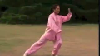 Tai Chi 24-English and Chinese subtitles