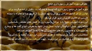 پرورش زنبور عسل   روش جمع آوری دسته های زنبور