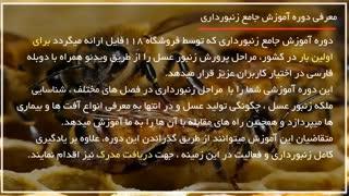 راه و روش زنبورداری و بررسی بیماری ها در فصل زمستان