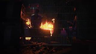 تریلر رونمایی از Resident Evil 3