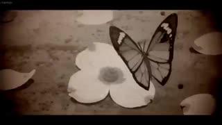 nightcore_killing_butterflies_نایتکور کشتن پروانه ها